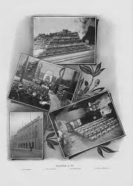david clarence executor letter template boustead sykes schwabe the man other families a collage of tin related activities by boustead