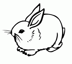 coloring page rabbit kids coloring