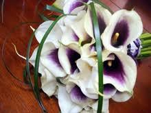 picasso calla picasso calla bouquet pretty petals