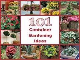 Planter Gardening Ideas Container Gardening Ideas