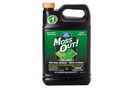 Moss Cleaner For Patios Moss Out Products