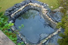 Backyard Fish Pond Ideas Small Fish Pond Idea For Home Garden