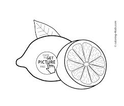 lemon fruit coloring pages kids aim