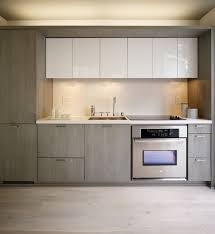 trendy idea modern kitchen cabinets the variety of modern kitchen