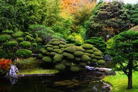colorado u s japanese gardens the graceful gardener the japanese tea garden in golden gate park