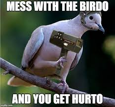 Animal Pun Meme - image tagged in animal pun bird weapons memes imgflip