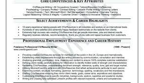 Free Resume Feedback Superior Tags Best It Resume Writing Services Online Resume
