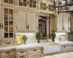 Various Interesting Kitchen Cabinet Doors Personable Unique - Country cabinets for kitchen