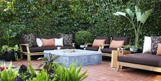 Potted Plant Ideas For Patio by Patio Plants For Privacy Plants For Privacy Around Patio Tall