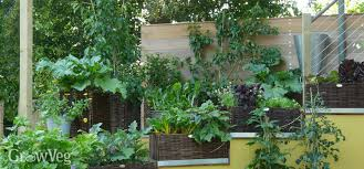 ideas for small gardens growing vegetables vertically