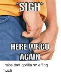 Here We Go Again Meme - sigh here we go again i miss that gorilla so effing much meme on me me