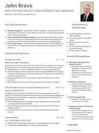 professional resume template cv templates professional curriculum vitae templates
