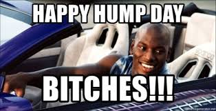 Hump Day Memes - happy hump day bitches meme xyz