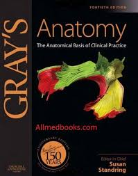 Best Anatomy And Physiology Textbook Download Gray U0027s Clinical Anatomy Pdf All Medical Books