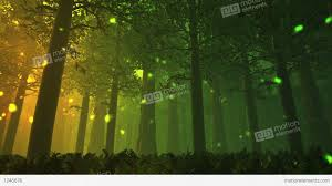 deep forest fairy tale scene fireflies 3d render stock animation
