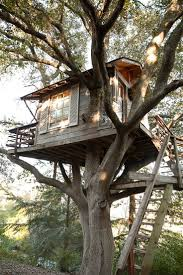 182 best treehouse images on pinterest treehouses the tree and