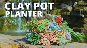 face planters diy clay pot planter video hgtv