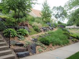 Landscaping Ideas For A Sloped Backyard 97 Best Plants For Banks Hillsides And Slopes Images On Pinterest
