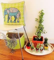indoor succulent garden design lovin u0027
