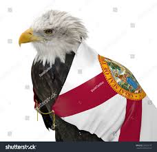 Floridas State Flag American Bald Eagle Wearing Florida State Stock Photo 258201179