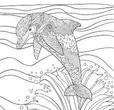 wildlife coloring book amazon com tropical paradise coloring book 31 stress