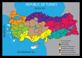 printable pictures of turkey the country turkey country map vector map of turkey country stock vector
