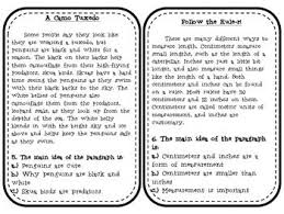 paragraph stories for reading comprehension 211 best reading comprehension images on teaching