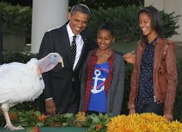 photos malia obama s growth as seen through family turkey