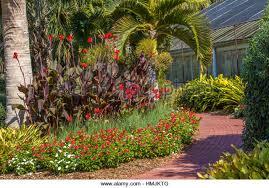 Botanical Gardens Sarasota Fl Sarasota Florida Garden Stock Photos Sarasota Florida Garden