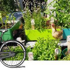 Urban Garden Amsterdam Urban Farming Bike Tour Off The Beaten Track In Amsterdam