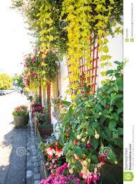 house flower decoration my web value