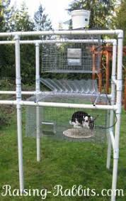 Best Rabbit Hutches Rabbit Cage Rabbit Hutch Building Plans Links To Free Cage Plans