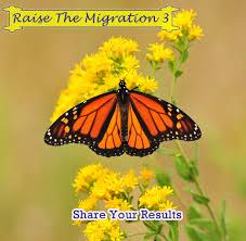 Monarch Migration Map 2015 Monarch Migration Raise The Migration Results