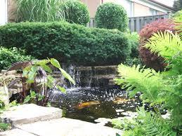 diy backyard pond design and ideas cooper house photos clipgoo