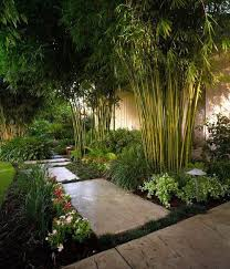 Landscaping Ideas For Privacy Anne Roberts Gardenslandscaping Ideas For Privacy The Chicago