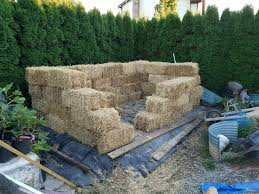 straw bale structure for fig protection ourfigs com
