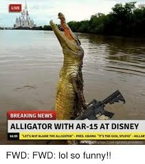Gator Meme - breaking alligator with ar 15 spotted at disney ar15 com