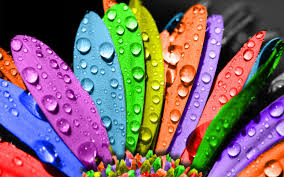 Colors Fine Hd Widescreen Wallpaper U0027s Collection Colors Wallpapers 41