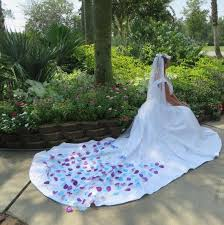 purple and white wedding superlative butterfly wedding veil purple and turquoise wedding
