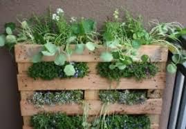 Vertical Garden For Balcony - add space with creative vertical gardens part 2 the micro gardener