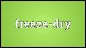 design freeze meaning freeze dry meaning youtube