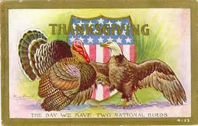 turkey day how one looking bird came to rule a national