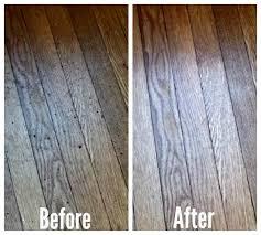 Best Hardwood Floor Steam Mop Steam Mop For Hardwood Floors Titandish Decoration