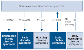 aetiological overlap between obsessive u2013compulsive related and