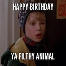 Best Funny Birthday Memes - birthday gift brainstorms pinterest birthdays happy birthday