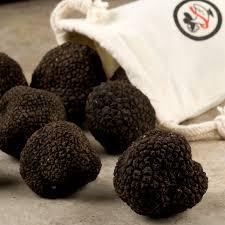 where to buy truffles online black truffle infused honey recipe d artagnan truffle kitchen