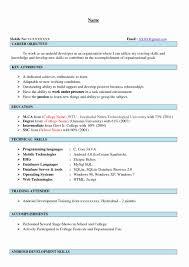 cv format for mca freshers pdf to excel mca fresher resume format unique mca freshers resume pdf kangaroo