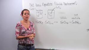 net ionic equation concept chemistry video by brightstorm