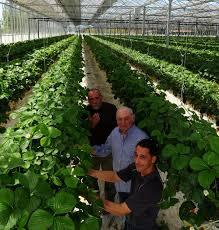 chambre d agriculture lot chambre d agriculture lot et garonne ctpaz solutions à la maison