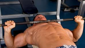 Proper Bench Form Bench Press Jpg